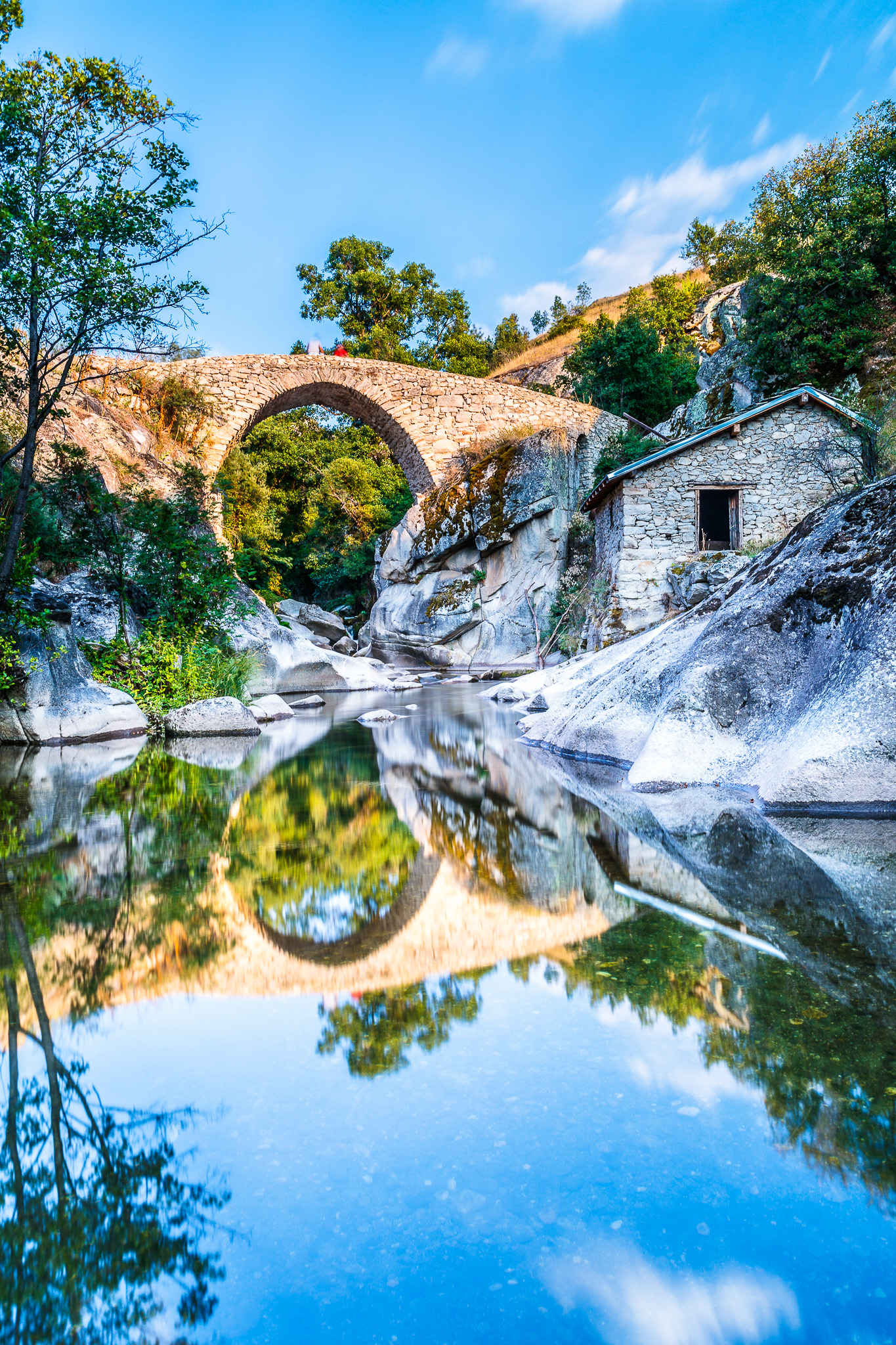 Movie Bridge